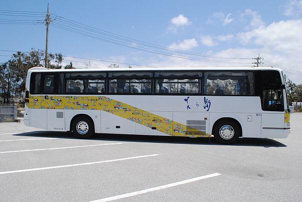 Large-size Coach